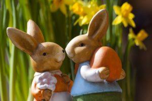 Ogni quanto si accoppiano i conigli